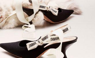 Které boty vám tuto sezónu zaručeně nesmí chybět?