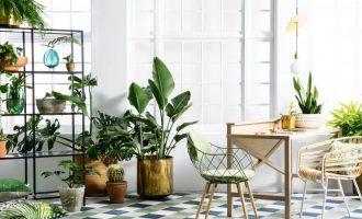 Nejnovější trendy bytového designu